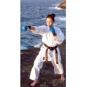 Håndbeskytter, Tokaido